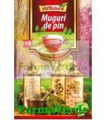 Ceai Muguri Pin 50Gr Adserv Adnatura