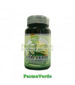 Ceai Verde +Clorofila 30 capsule Merco
