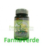 Ceai Verde + Clorofila 30 Capsule Herbavit