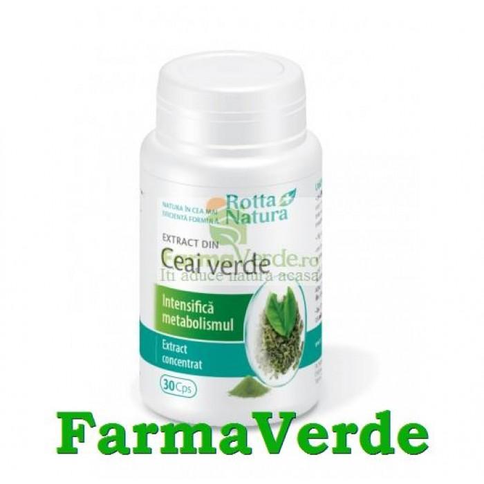 Ceai Verde Extract 100 mg 30 capsule Rotta Natura