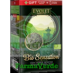 Ceai Verde Sencha Bio Sensation Evolet 80 gr Vedda Kalpo