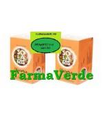OFERTA! Chicoria Instant 20 plicuri 1+1 GRATIS! Solaris Plant