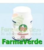 Coenzima Q10 60capsule Bios Natura