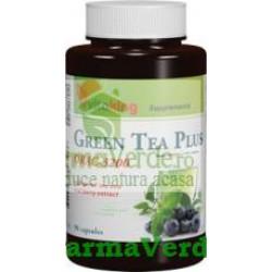 Complex antioxidant cu ceai verde si acai berry 90 cps Vitaking