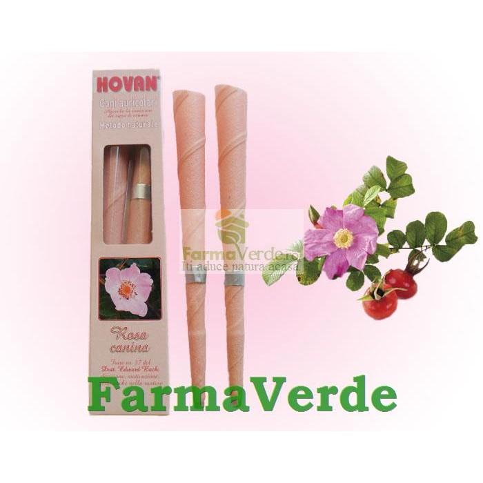 Conuri Auriculare Trandafir Salbatic 2 bucati Hovan Cosmetics