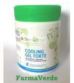 BIOMEDICUS Cooling Gel Forte gel camforat si mentolat 250 ml