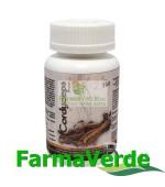 Cordyceps 100 capsule BBM Medical
