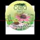 Unguent Echinacea 20 gr Ceta Sibiu Plafar