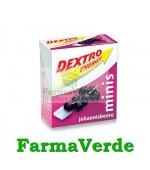 Dextro Energy Minis Coacaze Negre 50gr