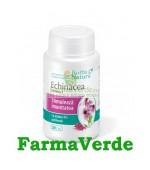 Echinaceea Extract 280 mg 30 capsule Rotta Natura