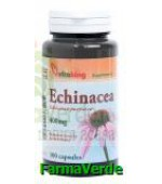 Echinacea 400 mg 100 capsule Vitaking
