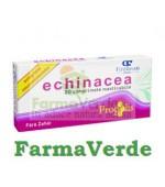Echinacea 20 comprimate Fiterman Pharma