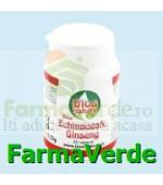 Echinacea & Ginseng 60 capsule Bios Natura