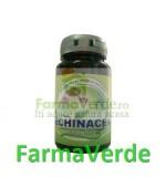 Echinaceea 30 tablete Herbavit