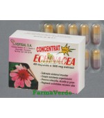 Echinacea 40 Cps Hofigal