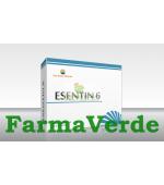 ESENTIN 6 (Fara Vitamina B12) 30 capsule Sun Wave Pharma