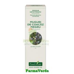 Extract Concentrat din Muguri de Coacaz Negru 15 ml Plantextrakt