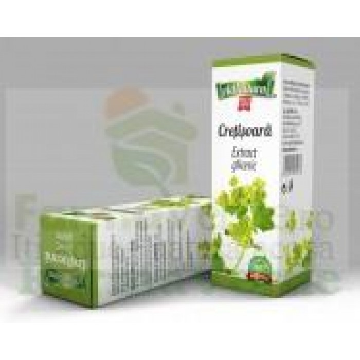 Extract Gliceric CRETISOARA 50 ml Adnatura Adserv
