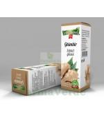 Extract Gliceric GHIMBIR 50 ml Adnatura Adserv