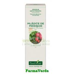 Extract Concentrat din Mladite de Merisor 15 ml Plantextrakt