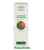 Extract Concentrat din Mladite de Zmeur 15 ml Plantextrakt