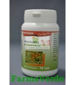 Fortifiant C polivitamina naturala C 70 capsule Favisan