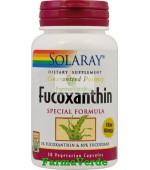 Fucoxanthin 30 capsule Slabire Secom Solaray