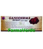 Ganoderma Extract 10 fiole Naturalia Diet