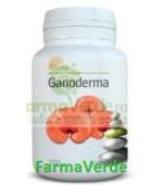 Ganoderma 100 comprimate Alevia