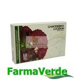 Ganoderma Lucidum 3 in 1 24 capsule BBM Medical