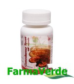 Ganoderma Spori Soft 60 capsule BBM Medical