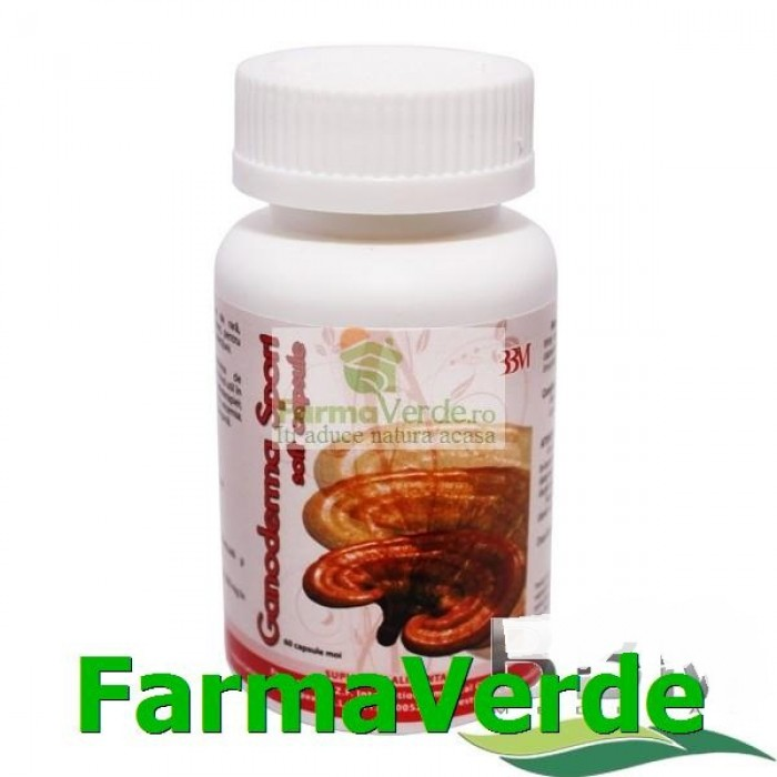 Ganoderma Spori Soft 60 capsule BBM Medical