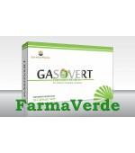 Gasovert 100 capsule Sun Wave Pharma