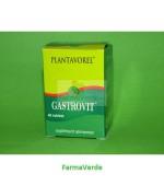 Gastrovit 40 tb PlantaVorel