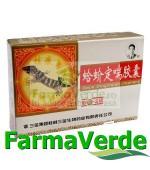 Gejie Dingchuan Wan 20 capsule BBM Medical