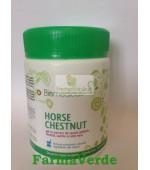 Biomedicus Gel HORSE CHESTNUT Castan,Aloe Vera 250ml Trans