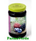 Gem Fructe Padure Fara Zahar Bio 250 Gr Sonnentor