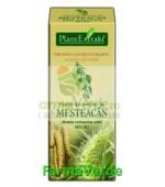 Gemoderivat Extract din seminte de mesteacan 50ml Plantextrakt