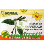 Gemoderivat de Carpen Alb - Muguri 30 Monodoze Hofigal