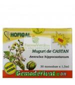 Gemoderivat de Castan Salbatic - Muguri 30 Monodoze Hofigal