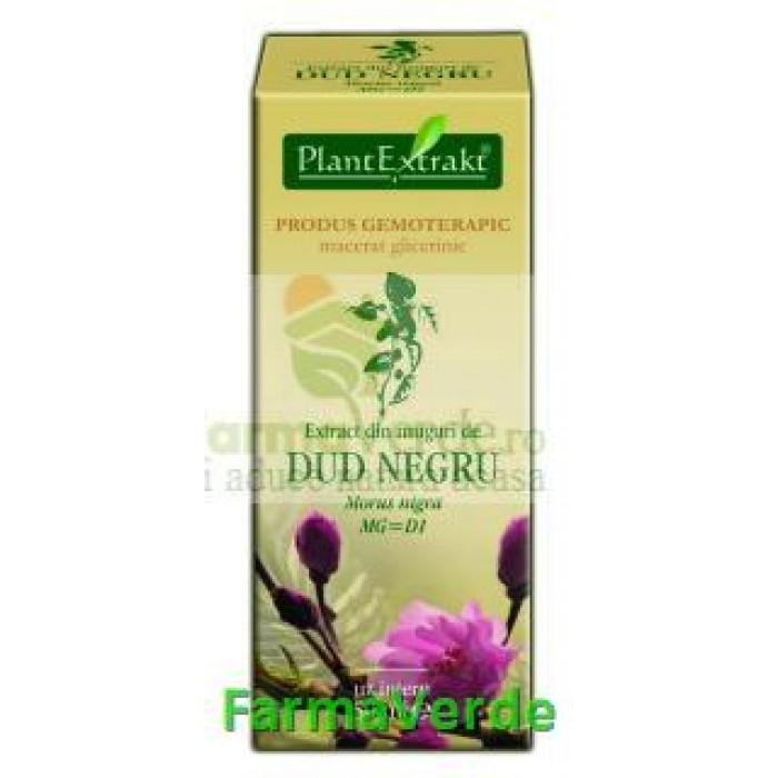 Gemoderivat Extract din muguri de dud 50ml Plantextrakt