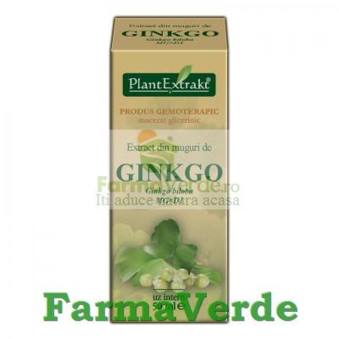 Gemoderivat Extract din muguri de GINKGO BILOBA Plantextrakt