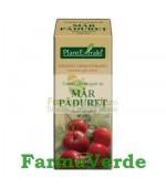 Gemoderivat Extract din muguri de MAR PADURET 50 ml