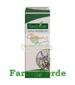 Giardinophyt Elimina Parazitii Intestinali 30 ml Plantextrakt