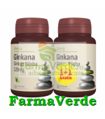 Ginkana Ginkgo Biloba PACHET! 120 mg 30cpr+30 GRATIS! Alevia