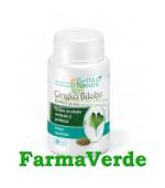 Ginkgo Biloba Extract 60 mg 30 capsule Rotta Natura