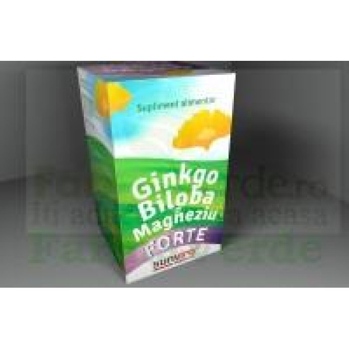 GINKGO BILOBA CU MAGNEZIU FORTE 60 capsule Sun Viro Pharma