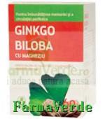 Biofarm Ginkgo Biloba cu Magneziu Forte 80 mg 60 comprimate