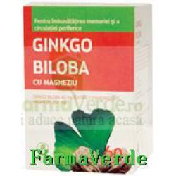 Biofarm Ginkgo Biloba cu Magneziu 40 mg 60 comprimate