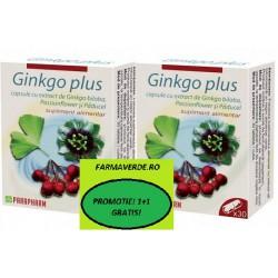OFERTA! Ginkgo Plus 30 cps 1+1 GRATIS! Quantum Pharm